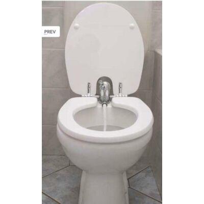 TOILETTE-NET 420L bidé funkciós WC tető